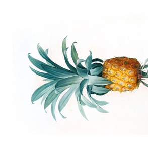 Teatowel With Vintage Pineapple Illustration