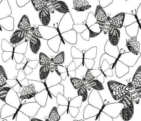 Rblack-and-white-moths-and-butterflies_contest275787preview