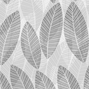 leaf-row-greyscale