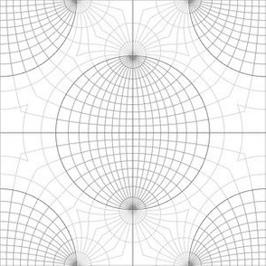 09136720 : stereographic net 4m