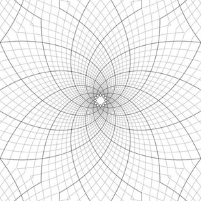 09136721 : logarithmic spiral graph 6m