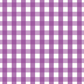 gingham 1in grape