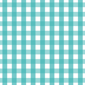 gingham 1in teal