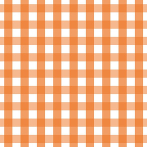 gingham 1in orange