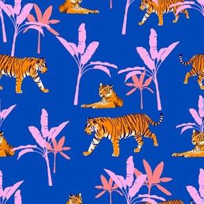 24_tiger patterns_blue