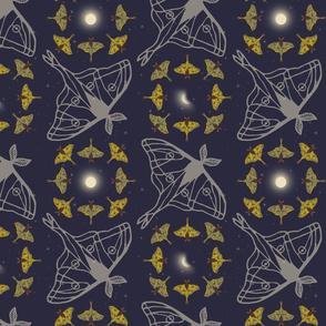Lunar Moth Dance Squared