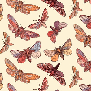 Earthy Moths