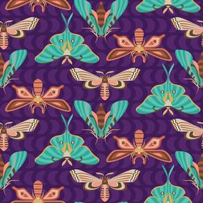 modern moths turquoise