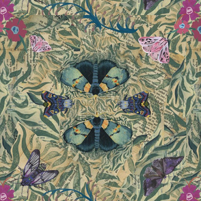 Dreamy Moths