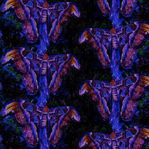 LARGE GRUNGE MOTHS PURPLE BLUE BUTTERFLIES PAYSMAGE