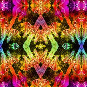 ABSTRACT PATTERN 11 coordinate to rainbow moths paysmage