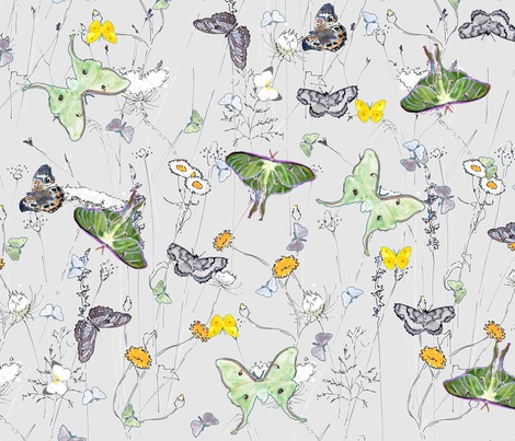 Rrmoths-and-weeds-pattern_contest275899preview