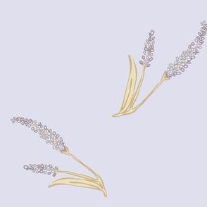 Taupe Spikeflower on blue mauve paducaru