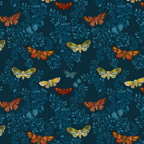 Night Moths {Blue}