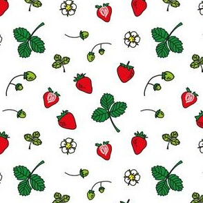 strawberries on the table