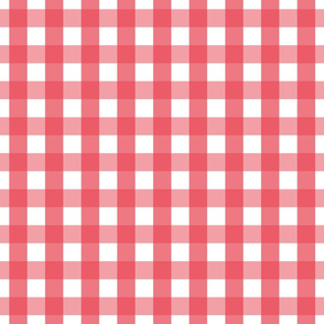 gingham 1in bold coral