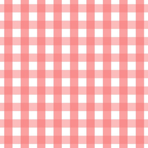 gingham 1in coral