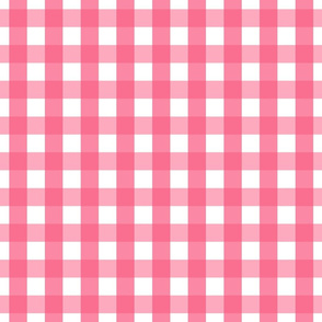 gingham 1in hot pink