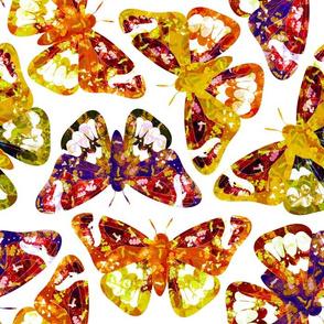 Batik Moths on White