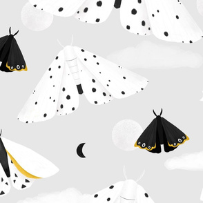 Black & White Moths