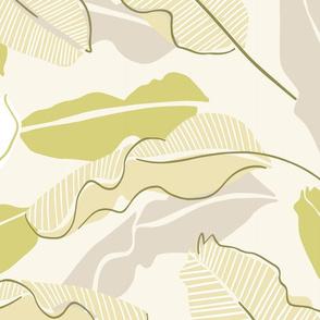 Soft jungle banana leaves