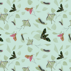 caterpillar_and_moths_green