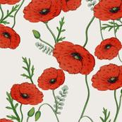 vintage_poppies
