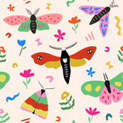 Moths of Every Color