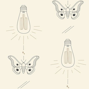 Mid-Century Moths