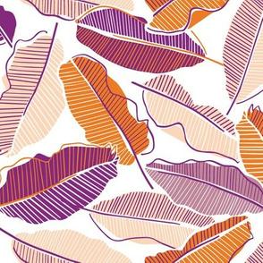 Tangerine and purple banana leaves