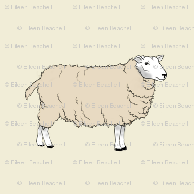 Rsheep-full-body_preview