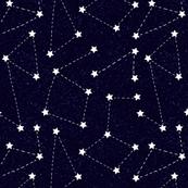 Aurora Cosmos Black
