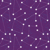 Aurora Cosmos Purple