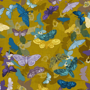 Moths & Orchids (Bamboo)