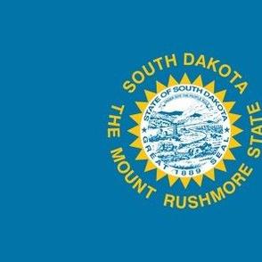 South Dakota State Flag Pattern