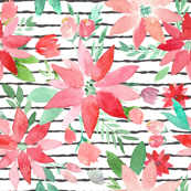 Perfect Poinsettas Christmas Watercolor on charcoal stripes