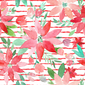 Perfect Poinsettas Christmas Watercolor on Red Stripes