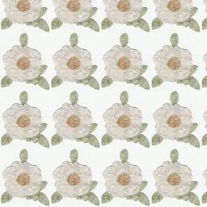 Primitive White Roses