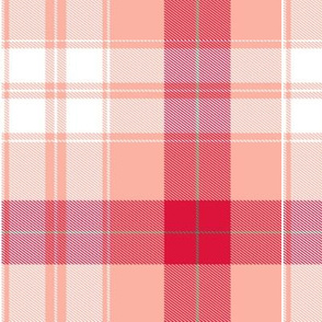 peach and red plaid