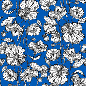 Hand-Drawn Poppies in Blue
