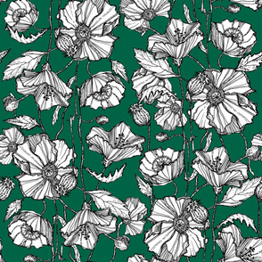 Hand-Drawn Poppies in Green