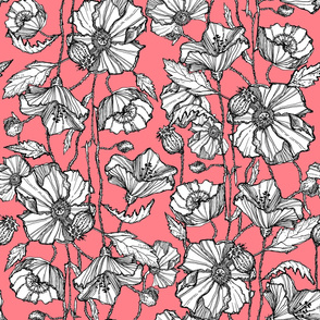 Hand-Drawn Poppies in Coral Salmon