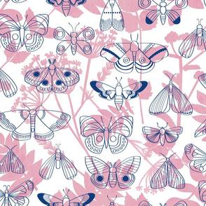 Moths and Monoprints - Pink