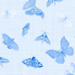 half drop blue moths on light blue linen