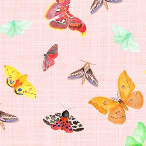 half drop watercolor moths on light pink linen | large scale