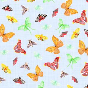 half drop  watercolor moths on light blue linen | small scale