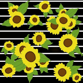 Sunflowers with small white stripes/ black