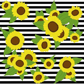 Sunflowers w Medium Black and White Stripes