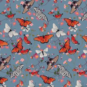 Butterfly garden-01