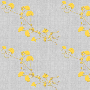 Dicondra yellow
